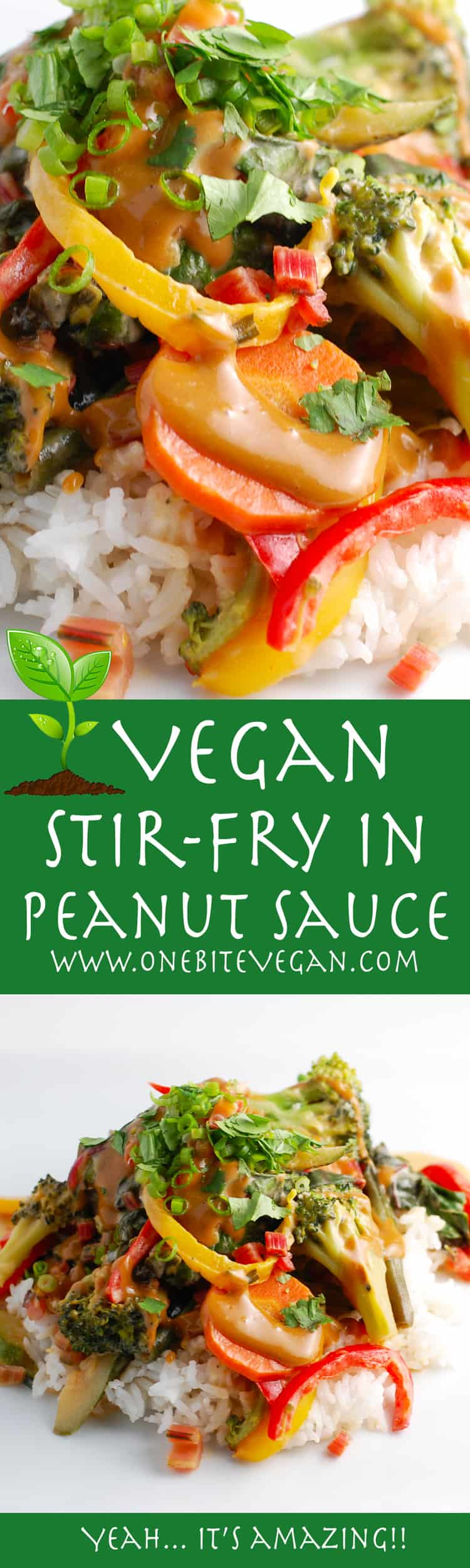 Vegan stir-fry veggies in peanut sauce. Fresh vegetables are stir-fried and then drizzled with a sauce made from coconut milk and vegan peanut sauce.